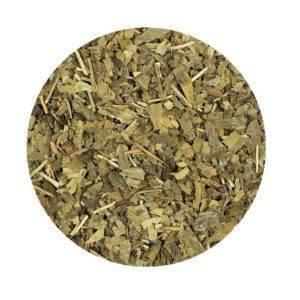 Jinan list (ginkgo list), čaj z jinanu