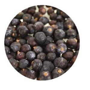 Jalovec plod (jalovčinky)