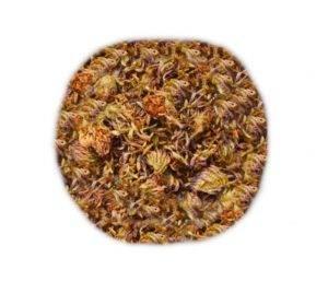 Jetel červený květ (čaj z jetele)