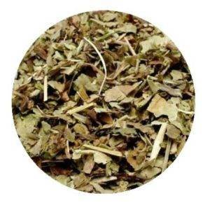 Plicník lékařský čaj (plicník list)