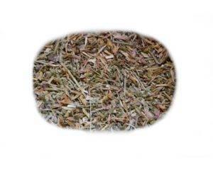 Zeměžluč (zeměžlučový čaj)