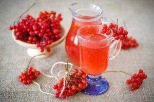 Čaj ze schizandry