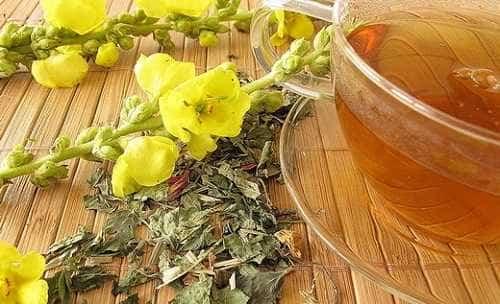 Diviznový čaj