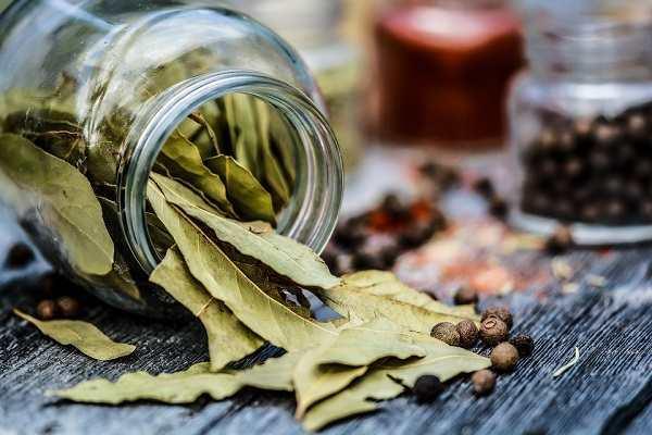 Bobkový list a jeho účinky