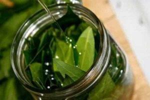 Čaj z bobkového listu