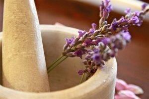 Čaj z levandule - recept