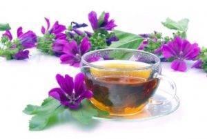 Slézový čaj účinky