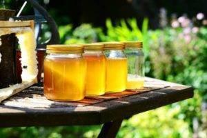 Med a jeho účinky