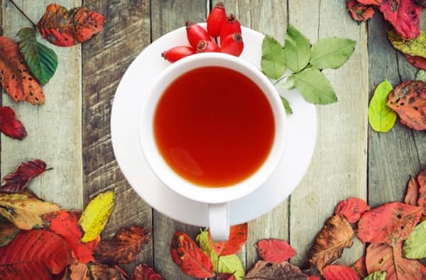 Příprava šípkového čaje
