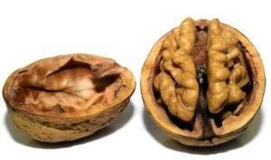 Vlašské ořechy účinky