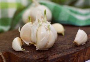 Česnekové kapky domácí výroba
