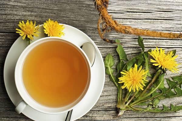 Čaj z kořene pampelišky recept