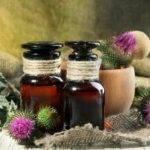 Ostropestřec mariánský tinktura recept