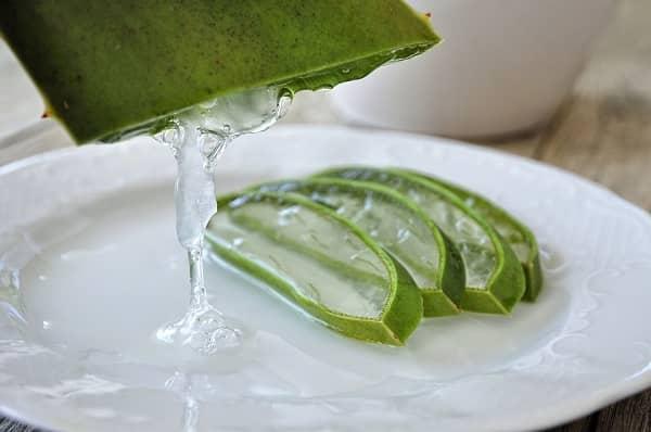 Šťáva z aloe výroba (domácí gel z aloe)