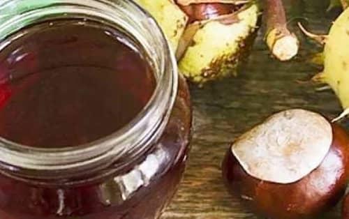 Tinktura z kaštanů recept
