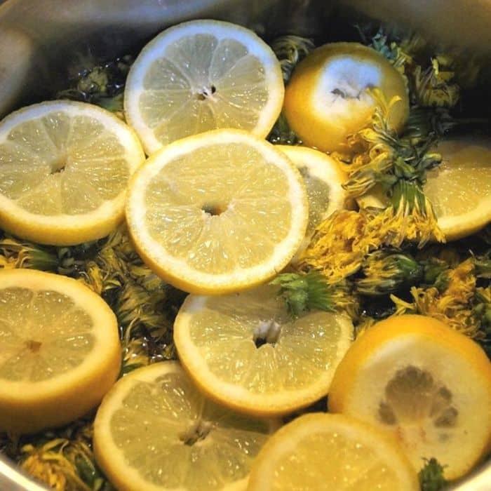 Pampeliškový med recept (recept na pampeliškový med)